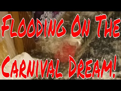 5pm et Bruce is Live! Carnival Dream Suffers Onboard Flood 50 Cabins Affected Deck 9 Update!