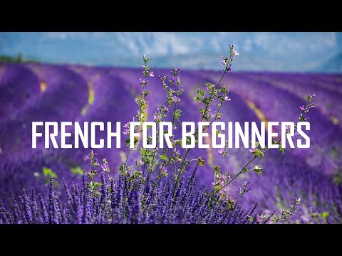 [French for beginners] Units 1-2-3-4-5-6 (8 hours 53 minutes)