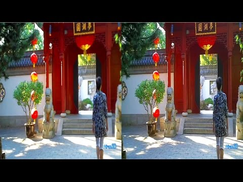 3D SBS VR  - The Magic of Lanterns, Chinese Garden
