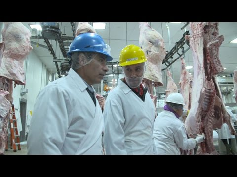 Washington Grown: Inside a Beef Slaughter Facility