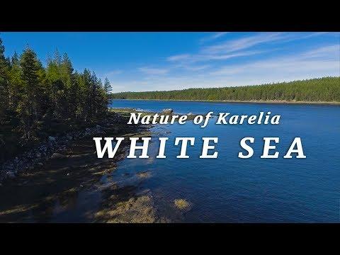 Природа Карелии -