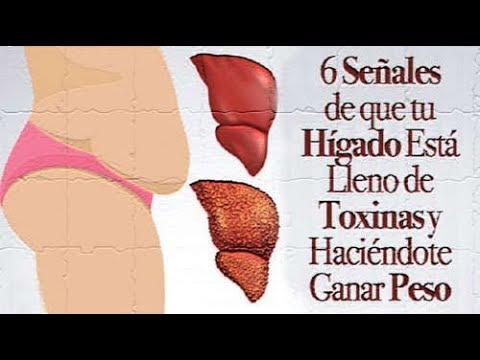 6 señales de que tu hígado está lleno de toxinas y haciéndote ganar peso. Detenerlo así