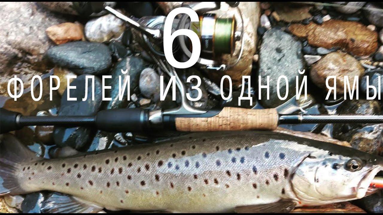 Как я таскал форелей одну за другой.Рыбалка,Кыргызстан 2020.