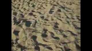видео Отдых в Избербаше
