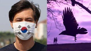 Hàn Quốc: Thành phố vắng lặng, quạ đen đầy trời - Khai Nguyên TV