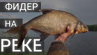 ПЕРВЫЙ РАЗ С ФИДЕРОМ НА РЕКЕ А ТУТ КЛЮНУЛ ОН Рыбалка одного леща Фидерная ловля