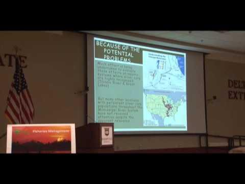 Silver Carp versus Native Fish following 2011 Flood - Quinton Phelps, Missouri Dept. of Conservation