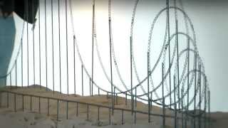 """Death by Rollercoaster"" - The Euthanasia Coaster"