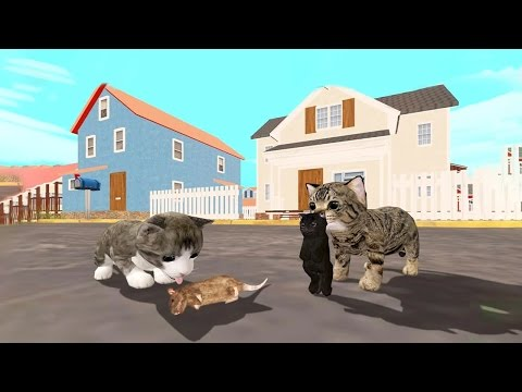 Cat Sim (by Turbo Rocket Games) Android Gameplay [HD]