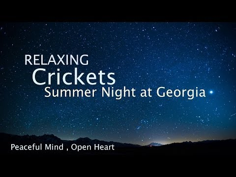 Sleep and Relaxation Nature Sounds, Crickets Summer Night -