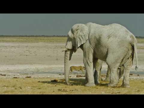 NAMIBIA EXPLORA