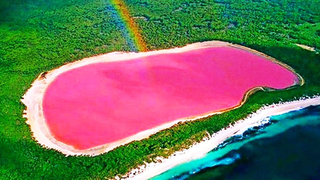 17 Amazing Things In Nature You Wont Believe Actually
