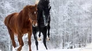 Yiruma....A Winter Story