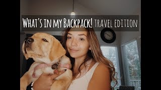 What's in my Bag- Travel Edition! Ft. Outlander Dog Gear