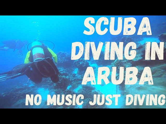 Scuba Diving in Aruba [no music] Fish, Coral, Turtles