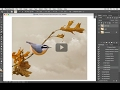 Painting Clouds with the Mixer Brush by Scott Deardorff