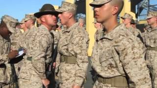 Company I Senior Drill Instructor Inspection
