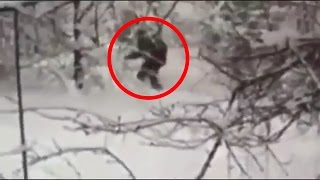 Russian Bigfoot Caught On Tape 2015