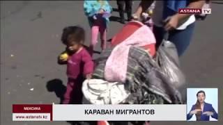 США защищается от мексиканских мигрантов колючей проволокой