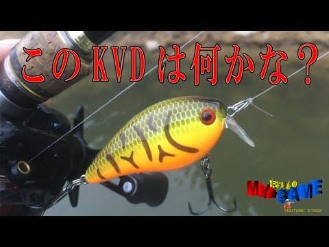 このKVDのクランクベイトは何かな弘法筆を選ばず原点回帰すれば何でも釣れる ~まるりんのMY GAME~ ストライクキング Strike King KVD