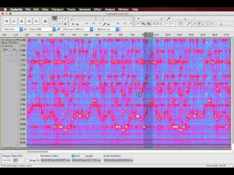 Using Audacity's spectrogram to transcribe music