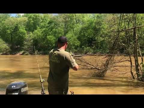 Catfishing in the Dan River after a flood.