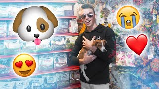 ADOPTING A PUPPY!? (ALMOST ARRESTED)