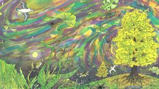 EnSecreto - Ginkgo biloba