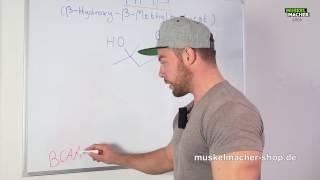 HMB als Supplement 💊 Sinn oder Unsinn?