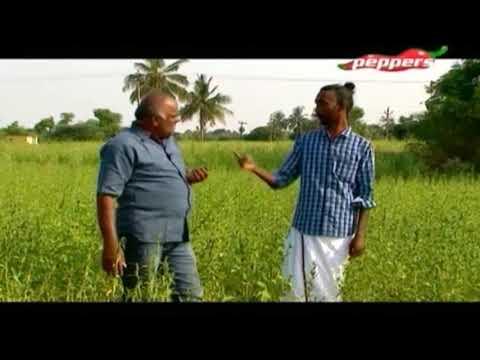 Organic Vivasayi | Farmer Devarajan | 20 May 2018