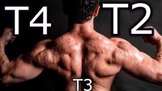 T3 vs t4 a fogyáshoz