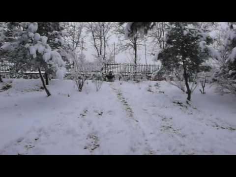 Un Día En La Nieve