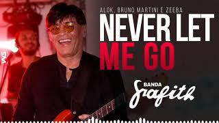 Baixar Banda Grafith - Never Let Me Go | Alok, Bruno Martini e Zeeba