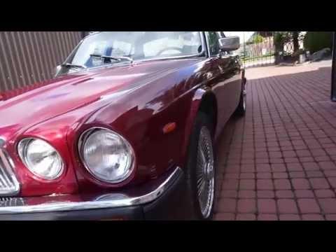 (Old) Jaguar repair by Stanliner (AFTER)