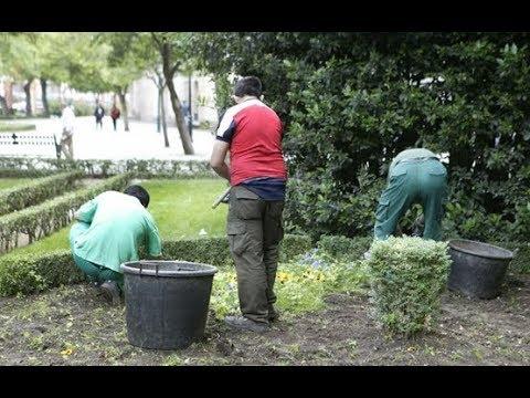 El Consistorio talaverano prescinde de cuatro trabajadores discapacitados