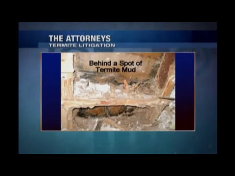 Termite Litigation