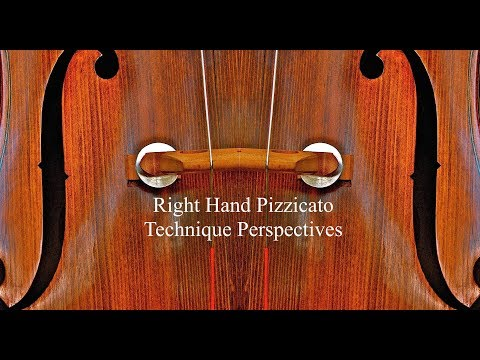 Right Hand Pizzicato Technique Perspectives