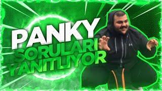 SoloGate | Panky