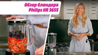 Обзор блендера Philips HR 3655