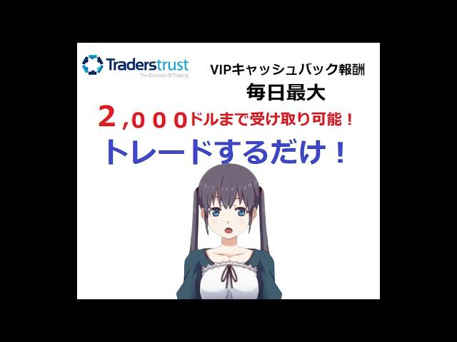 トレーダーズトラスト(TradersTrust)  VIPキャッシュバックで毎日最大2000ドル
