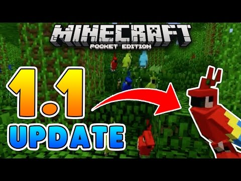 Pet PARROTS 1.1 UPDATE! Minecraft Pocket Edition (Concept Addon)