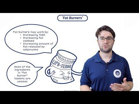 Do Fat Burners Work? The Best Fat Burner