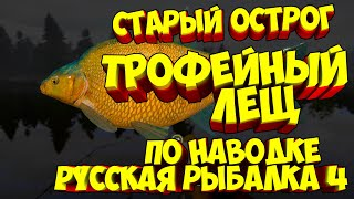 русская рыбалка 4 Лещ озеро Старый Острог рр4 фарм Алексей Майоров russian fishing 4