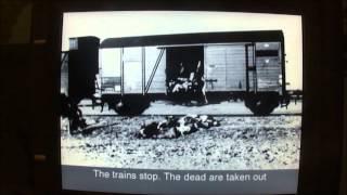 Yad Vashem - The Pogrom in Iasi