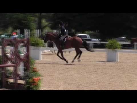 Video of ON POINT ridden by MEGAN CLARK from ShowNet!