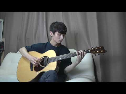 (Avicii) Wake Me Up - Sungha Jung