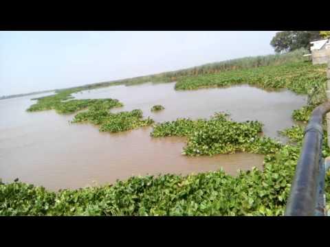 Harike Pattan - Sutlej and Beas rivers junction