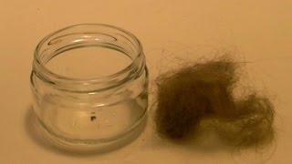 Hair vs Sulfuric Acid