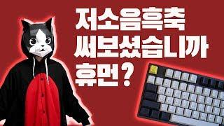 저소음 흑축 키감 딱 알려드림 (씽크웨이 토체티 리뷰)