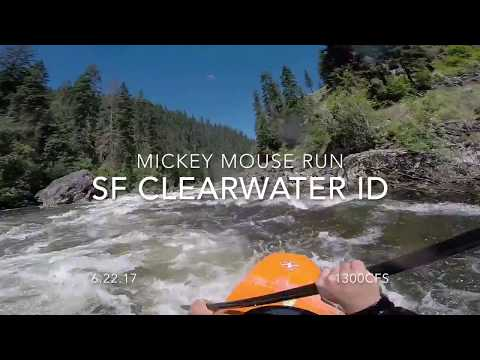 SF Clearwater River ID Mickey Mouse Run